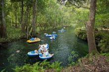 Itchtucknee Springs